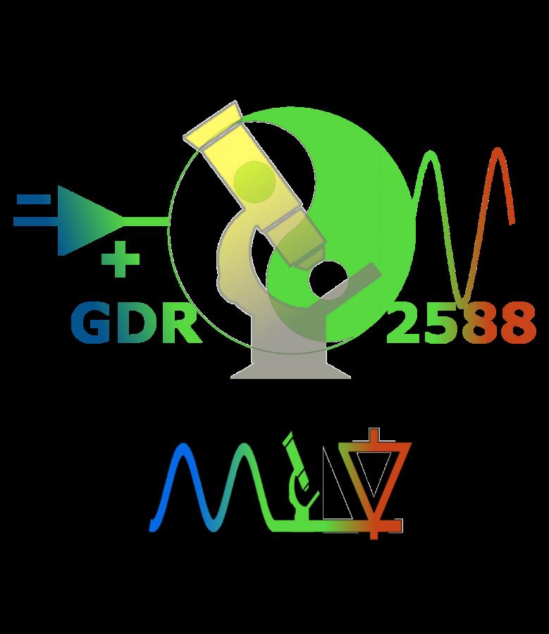 logo GDR MIV
